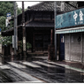 NIKON NIKON D5で撮影した(「アサリの話」 小江戸川越散歩138)の写真(画像)