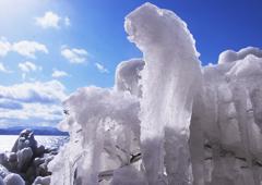 猪苗代のしぶき氷の中の「動物かくれんぼ」