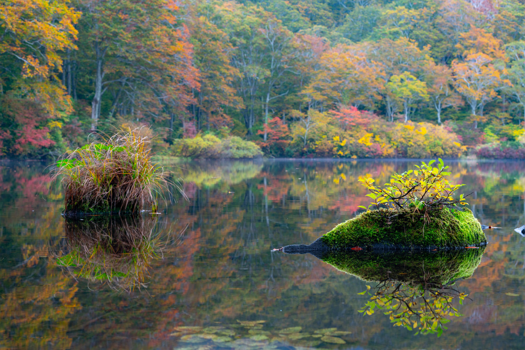 pond in the mountains by 0757 id 8154444 写真共有サイト photohito