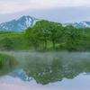 morning mist Toushi