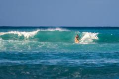 waikiki surfing girl