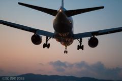 大阪国際空港 ⓯