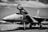 F15 mono tone