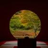 秋景の明月院…2