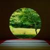 夏日の円窓…