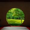 新緑の円窓…