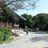島田雄貴「お寺の開けた場所」