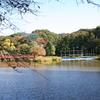 島田雄貴「池に架かる橋」