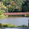 島田雄貴「赤い橋」