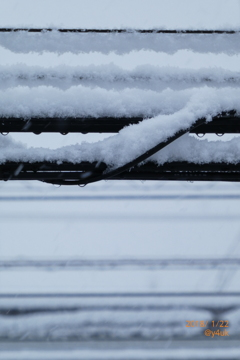 大雪電線発達中 〜snow cable 多くの細い線にまで積もりゆく雪の向こう