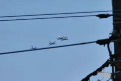 電線の向こうブルーインパルス〜Blue Sky, Blue Impulse〜予行