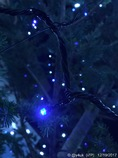 Blue White Light Night Xmas Tree [WB]