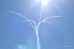 13:55神々しい大空の花〜太陽の光を浴びて今、拡がる希望〜ブルーインパルス