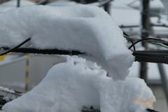 10:40 電線上の積雪がこちらを向いている〜大雪の翌朝snow〜449mm
