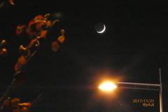地球照の三日月+紅葉+街灯+夜=最高貴重☆leaves moon light