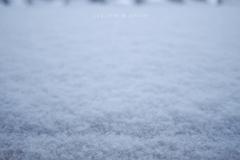 どこまでも限りなく降りつもる雪と〜Departures OM-D ver