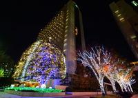 NIKON NIKON D3300で撮影した(ホテルスプリングス幕張 イルミネーション)の写真(画像)