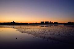 谷津干潟の日が暮れて