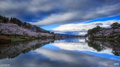 春満開・高松の池