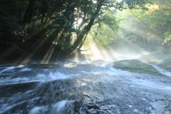 光芒 菊池渓谷 Ⅱ