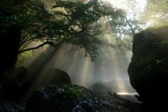 光芒 菊池渓谷