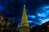 Christmas lights #4