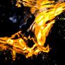 NIKON NIKON D50で撮影した(冷炎)の写真(画像)