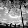 KONICA HEXARで撮影した風景(原宿の陸橋)の写真(画像)