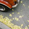 KONICA HEXARで撮影した乗り物(恵比寿の車)の写真(画像)