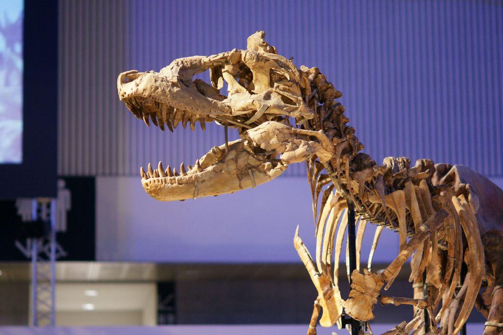 恐竜 その2
