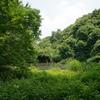 谷戸の池5