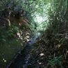 谷戸の池3