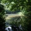 谷戸の池1