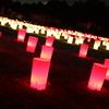 なら燈花会2009