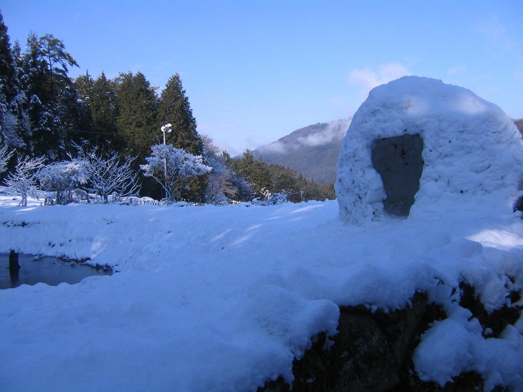 冬の醍醐味