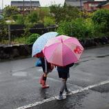 なかよし(雨)
