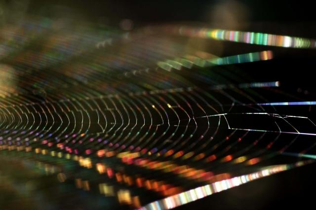 光の連鎖  3