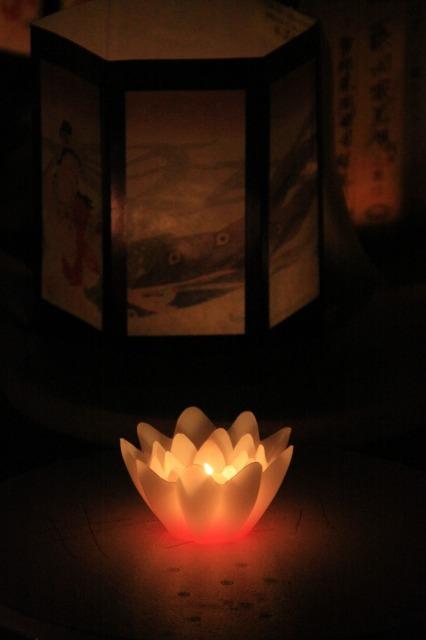 灯り  3