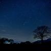 星降る冬の夜