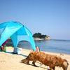 浜辺探索の夏!090817