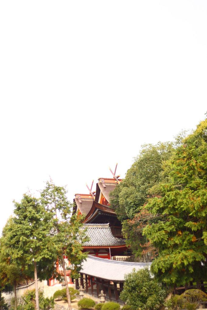 吉備津神社の森