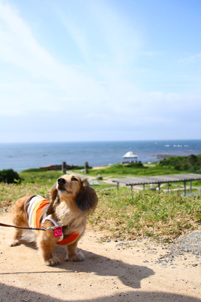 角島で夏のお散歩
