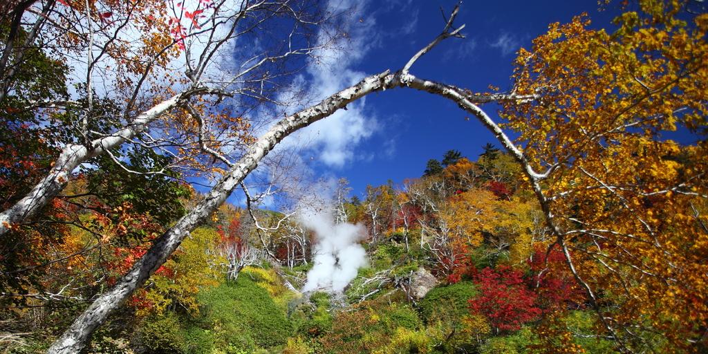 大雪高原の紅葉
