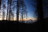富士山 ~乙女高原より