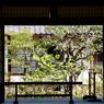 NIKON NIKON D300で撮影した(窓)の写真(画像)