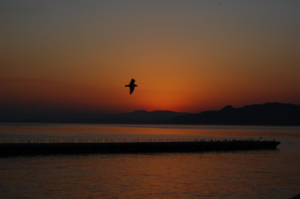 別府湾の朝焼け