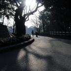 NIKON NIKON D300で撮影した人物(朝日に向かって)の写真(画像)