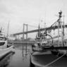 NIKON NIKON D300で撮影した風景(漁船と…)の写真(画像)