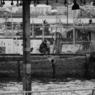 NIKON NIKON D300で撮影した風景(釣り人)の写真(画像)
