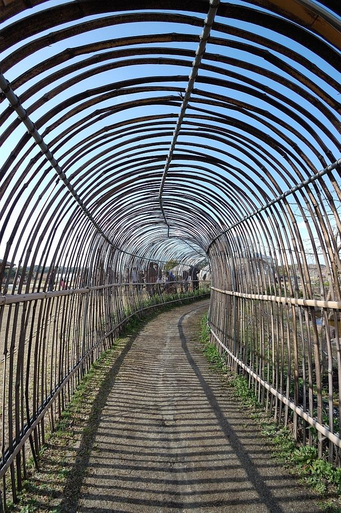 縞々のトンネル